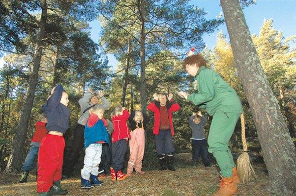 スウェーデンの森ムッレ