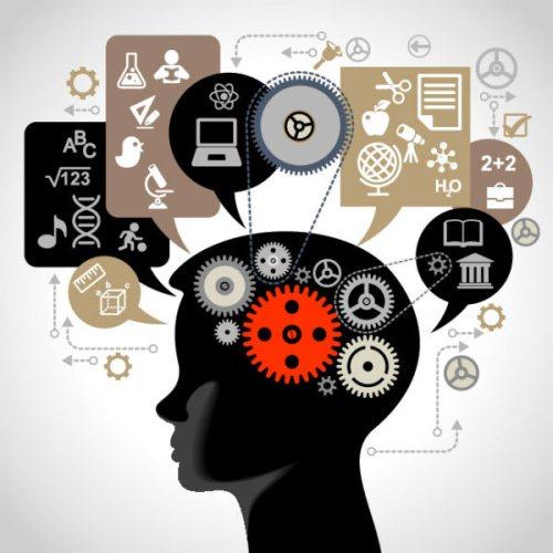 幼児期の脳教育